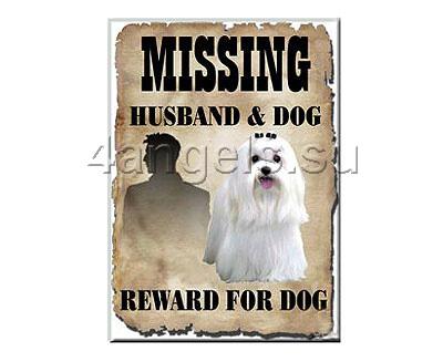 "Магнит ""Maltese Missing"""